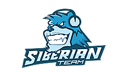 SibTeam