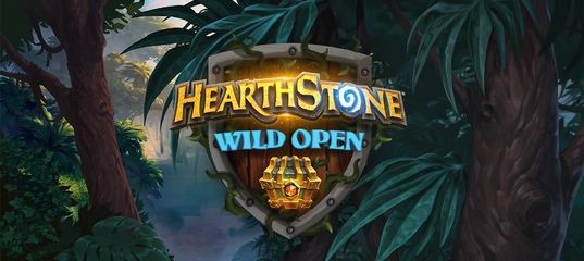 Hearthstone Wild Open 2019